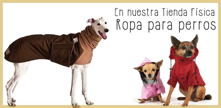 Ropa para perros de todos los tamaños en la tienda física de Dinomascota