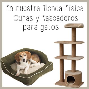Cunas y rascadores para gatos tienda física Dinomascota